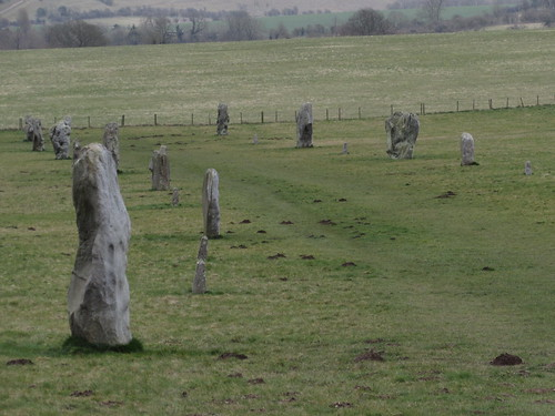Avebury: West Kennet Avenue (Wiltshire)