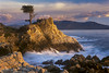 Lone Cypress at sunset, Monterey County, California USA