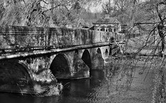 Bridge, Godmersham (Aliy) Tags: bridge blackandwhite bw river blackwhite kent village arches willow willows willowtree stour oldbridge godmersham greatstour