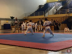 stefanou_15_5_2016_knockdown_169