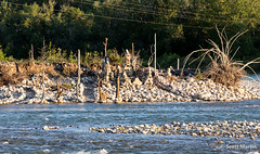 IMG_9116 (Scott Martin Calgary) Tags: ca canada calgary alberta bowriver