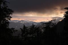 A glimpse through the trees at Pemberton (P.A.B.) Tags: trees sunset sky snow canada mountains rain clouds gloomy britishcolumbia mount pemberton nikond800e nikonnikkor2470mmf28afsged curriesea highwaysea