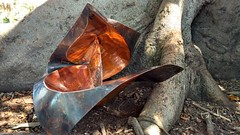 Same folded copper as the beach shot (peterdbarnes) Tags: copper folded fold curved