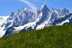 Cengalo e Pizzo Badile seen from Alp Tombal (Bregaglia Valley). (GIVI58) Tags: switzerland suisse svizzera alpi alpe bergell pizzobadile badile valbregaglia cengalo alptombal