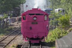 Pink SL at Wakasa Railway (47) (double-h) Tags: sl tottori jnr steamlocomotive c12   eos6d   pinksl wakasarailway  c12 ef100400mmf4556lisiiusm c12167 wakasastation classc12 c12 sl