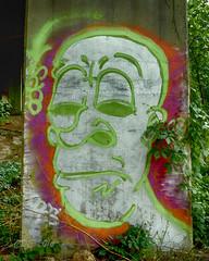 Under Dark Art (CDE1231) Tags: art colors face photography graffiti nc belmont cde