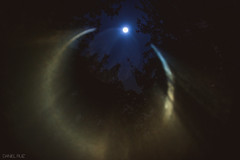 Lord of Darkness (Daniel A Ruiz) Tags: blue trees sky moon leaves night circle fire nikon df outdoor ring flare 58mm