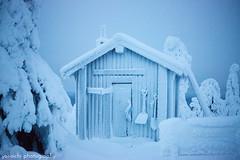 unreal (***yokoichi) Tags: winter ice finland frozen lapland 500px visitfinland ifttt polarnightmagic