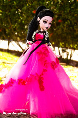 Draculaura, MH (Osmundo Gois) Tags: draculaura draculocker monster high doll mattel