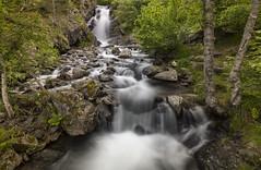 Riu Polls (Marcos_GF) Tags: wood naturaleza nature rio landscape waterfall agua long exposure bosque andorra bosc riu arinsal masella