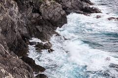 Cinque Terre IMG_9393 (Herb Nestler) Tags: italy cinqueterre monterosso italianriviera