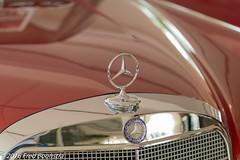 IMG_0047pc (A.J. Boonstra) Tags: classic netherlands car logo classiccar front mercedesbenz 1967 brummen 250se mercedesbenz250se ef100mmf28lmacroisusm canon70d galleryaaldering