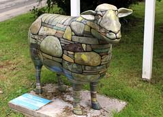 Burley (Cumberland Patriot) Tags: wood hotel bay sheep outdoor painted low go cumbria trust ambleside burley calvert ewe cumbrian herdwick goherdwick