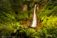 Blanco sobre verde (Consuelo Vergara Mendez) Tags: waterfall costarica cascada