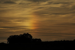 Rainbow cloud at Sunset (LindaShaws Images) Tags: parhelion ice sundogcloud rainbow sunset glow evening clouds silhouette silhouettes canon5d staffordshire august nacreous