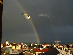 al posto giusto nel momento giusto (fotomie2009 OFF) Tags: balcorama arcobaleno rainbow savona liguria italia italy