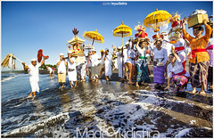 Colour of Bali (Bali Based Freelance Photographer and Photo Stocks) Tags: life people bali nature beauty canon indonesia eos photo foto stock culture daily made event procession orang cultural alam adat budaya balinese culturalevent yudistira myudistira madeyudistira myudistiraphotography