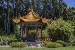 Chinese Garden (David-Hall) Tags: botanical newplymouth