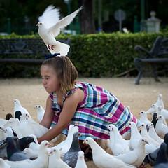 Petite Svillanaise - Sevilla (Espagne) (Xan Errecart) Tags: girl birds nikon oiseau andalousie colombe filette d3100