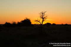 Sunset Over Etosha National Park, Namibia