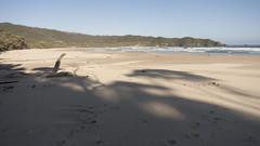 South Coast Track Prion Beach