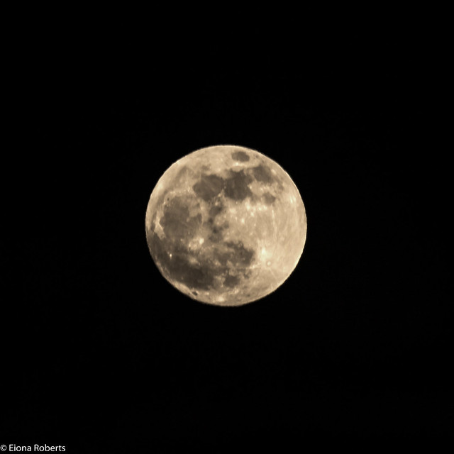 Tonights Moon Rising(99.6% Full) Northern Hemisphere