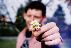 Would you like to go on a date with me? (m.sukhanenko) Tags: camera flowers summer love film nature iso200 flickr bokeh olympus romance question daisy analogue date zuiko olympusom2sp fujifilmsuperia om2sp extremebokeh zuikof1850mm