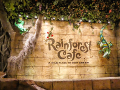 Rainforest Cafe (Nicholas Eckhart) Tags: usa retail mi america mall us interior auburn hills massive stores outlets rainforestcafe greatlakescrossing outletmall 2016