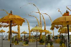 Bali Nusa Dua beach festival (rhonddalad) Tags: wedding bali seascape beach yellow festival umbrellas beachview baliwedding beachflags