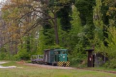 Felskak (Antonio Martinetti) Tags: train hungary forestry logging treno balaton erdei ferrovia vlak vonat vasut mesztegny felskak