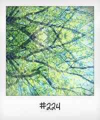 """#DailyPolaroid of 9-5-16 #224 • <a style=""""font-size:0.8em;"""" href=""""http://www.flickr.com/photos/47939785@N05/27498699743/"""" target=""""_blank"""">View on Flickr</a>"""