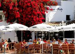 Relax en Salduba (camus agp) Tags: espaa rojo canoneos marbella bares banus bougainvilleas terrazas buganvillas blancoyrojo