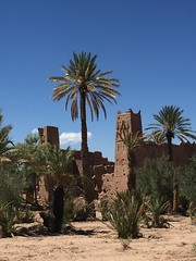 Kasbah  Skoura (pasquib) Tags: africa tree architecture palm morocco maroc kasbah