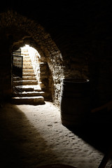 basement (intui.pro) Tags: old plant building history tourism stone museum architecture landscape town ruins outdoor stones citadel stonework reserve ukraine temples walls bastion stronghold fortress palaces fastness strengthening kamianetspodilskyi