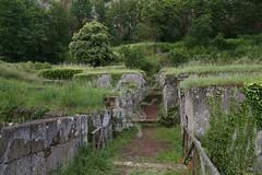 Necropoli di Orvieto_19