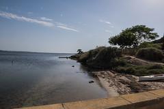 DSC_5675 (Pasquesius) Tags: sea island mare lagoon sicily laguna saline sicilia saltponds isola marsala mozia mothia stagnone motya riservanaturaledellostagnone