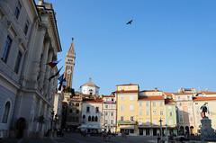 Giuseppe Tartini Square, Piran / Slovenia (anji) Tags: slovenia slovenija exyu exyugoslavia balkans istria istra adriaticsea adriatic jadran piran pirano