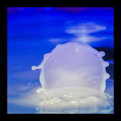 gouttes-10 (Fabrice17000) Tags: color macro milk eau bokeh drop lait goutte gouttesdeau