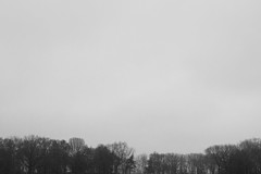 Central Park (Isaac Ortega) Tags: newyork canon centralpark manhattan 24mm canonrebelt3i