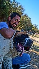 ALE Y PERRO (patricio_villegas) Tags: people dog guy arbol persona valparaiso arboles fat sony ale perro alpha hdr joven valpo sucio 2015