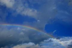 The colors (Marina Percego Ardito) Tags: iris cidade brazil sky brasil marina cores nikon br interior natureza dourado sp nuvens ceu arco hdr willian ardito telles tesouro d80 percego
