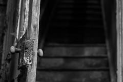 Gedney Railway Station Closed Since 1959 (BenChapmanphoto) Tags: door blackandwhite bw monochrome stairs handle mono march fuji open decay steps lincolnshire fujifilm derelict urbex gedney 2015 legacylens canonfd50mm18sc fujifilmxpro1