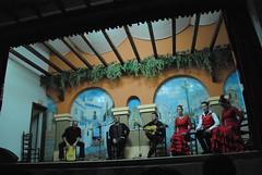 Flamenco en peña flamenca