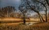 Landscape No. 55921 HDR (Knipser31405) Tags: hdr 2015 platinumheartaward