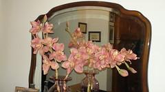 DSC00493 (amalia_mar) Tags: reflection mirror greece vase decor artificialflowers     sonyhdrtg3e