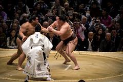 Sumo in Osaka-45 (Rodrigo Ramirez Photography) Tags: japan amazing traditional professional tournament osaka sumo yokozuna ozeki makuuchi hakuho sumotori sumotournament maegashira reikishi harumafuji topdivision