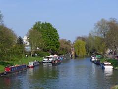 River Cam (jrw080578) Tags: trees cambridge river boats cambridgeshire rivercam narrowboats
