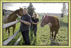 after work (zawaski) Tags: horses canada calgary beauty ambientlight dick noflash alberta bonnie rockymountains canmore canonefs18200mmf3556is zawaski2016