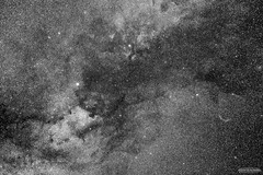 Cygnus Region in monochrome (AstroGuiGeek) Tags: nightphotography light sky blackandwhite france monochrome night stars noiretblanc astro ciel nebula astrophotography astronomy nuit constellations starry skyatnight cygne toiles meade astrophoto starrynight t3i milkyway astronomie cygnus northamericanebula monochromephotography deepsky voielacte ngc7000 veilnebula ngc6992 600d astrophotographie lxd75 canonphotography nbuleuse starrysky deepskystacker toil butterflynebula cieltoil cielprofond astrometrydotnet:status=solved cieldenuit eos600d canoneos600d rebelt3i astroguigeek franceastronomie astro2016 astrometrydotnet:id=nova1562462