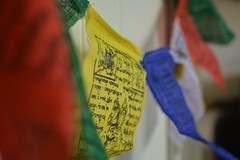 You only lose what you cling to. #prayerflags #buddhism #peace #compassion #strength #wisdom #5colours #5elements (priyanka_puthran) Tags: peace compassion buddhism strength prayerflags wisdom 5elements 5colours